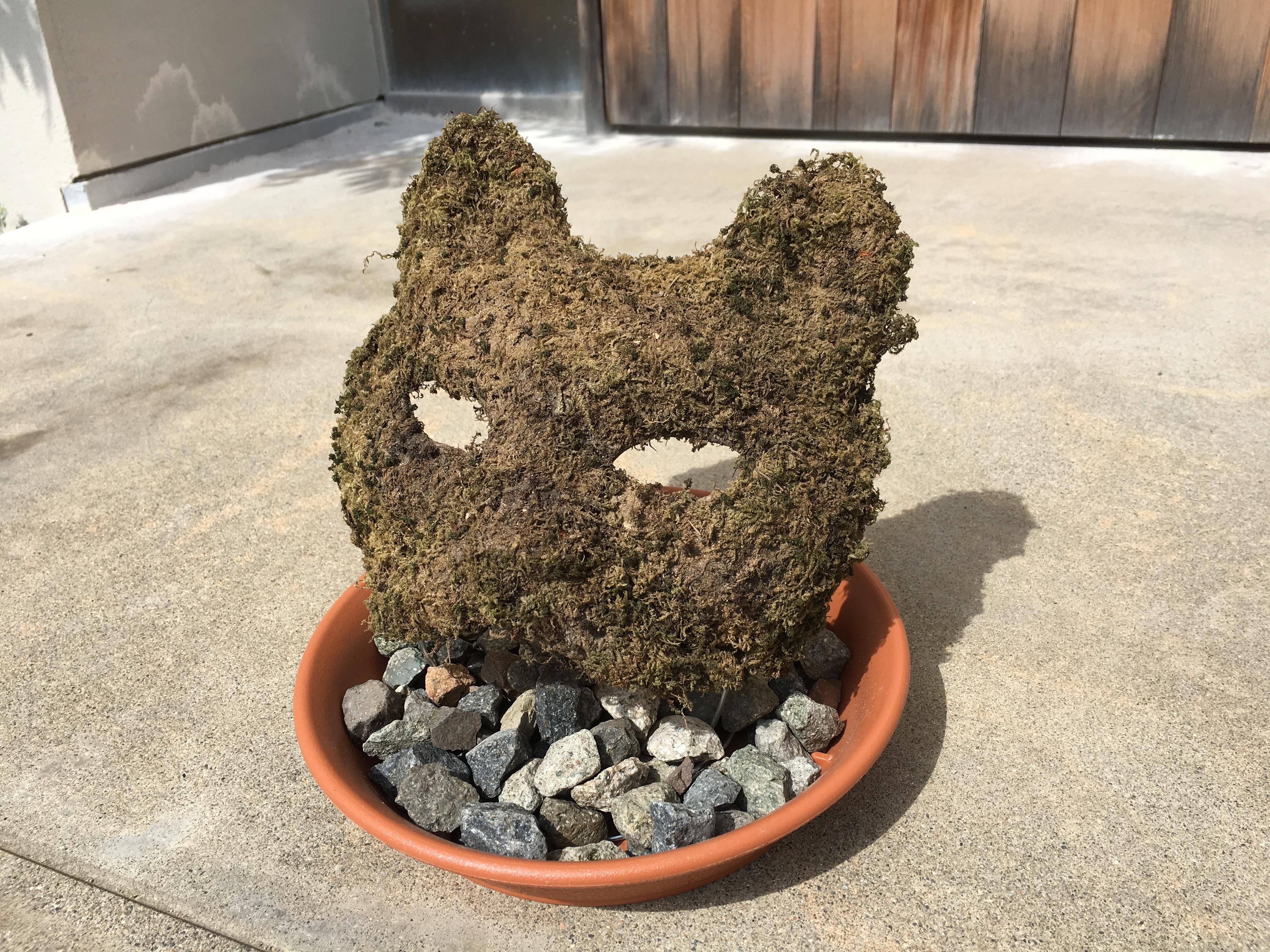 苔でキツネのお面を作る